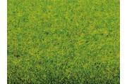 Имитация травы, весенний луг, мат 200x100 см
