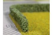 Живая изгородь темнозеленая