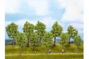 Весенние лиственные деревья, 5 шт., 10-14 см